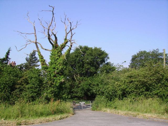 Moorfields Farm