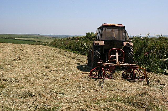 Hay Turning