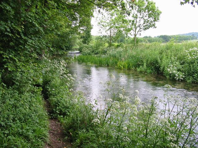 The River Allen Moor Crichel Dorset