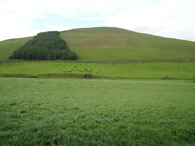 Slopes of Drochil Hill