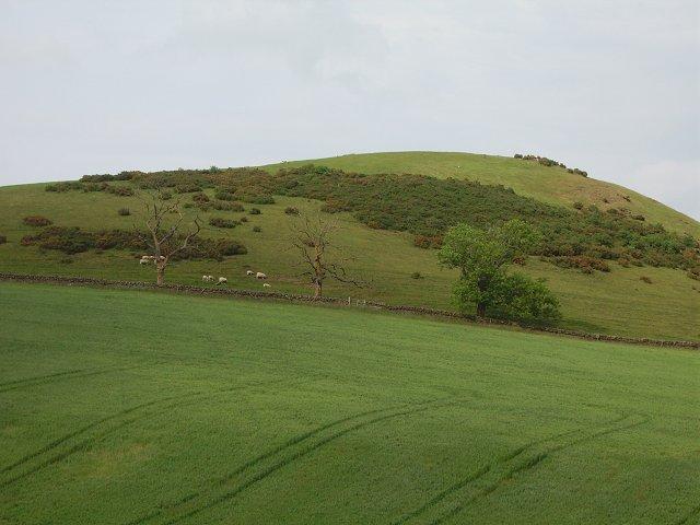 Blyth Hill