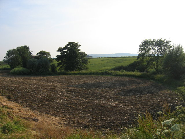 Fields by the River Isbourne