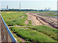 ST5384 : Severn Beach Looking South by Linda Bailey