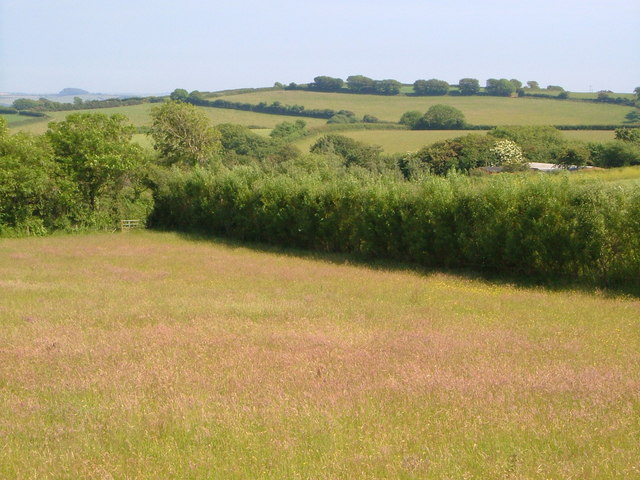 View near Oldaway Tongue