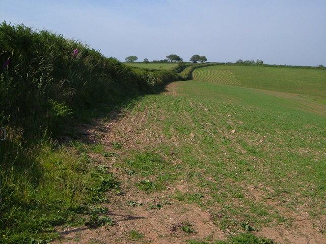 Lane to Redford Cross