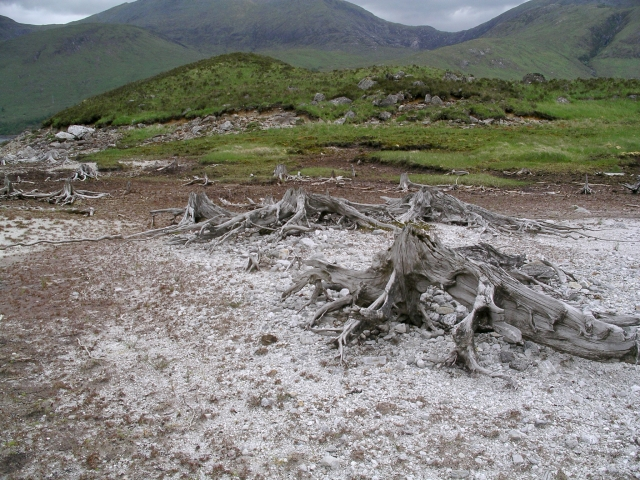 Beached island, Loch Quoich