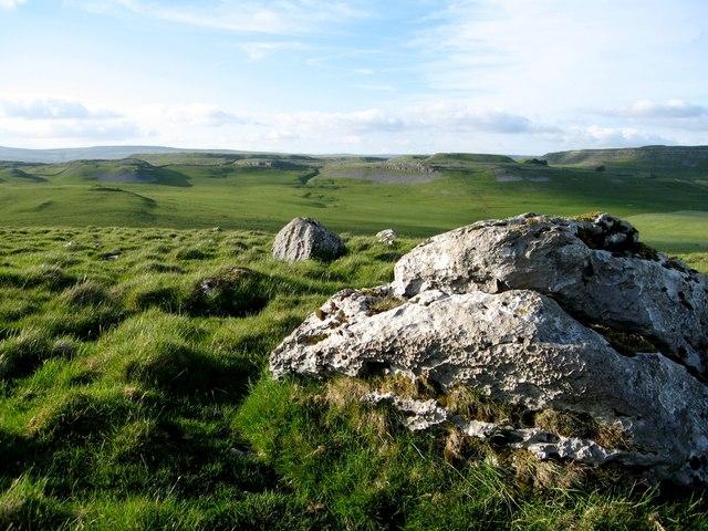 Upland limestone grassland on Great Close Hill, Malham Tarn.