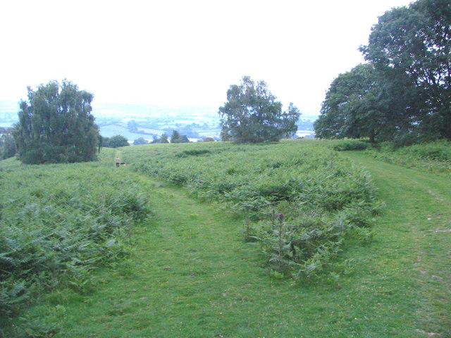 View Southeast from Oaker Coppice