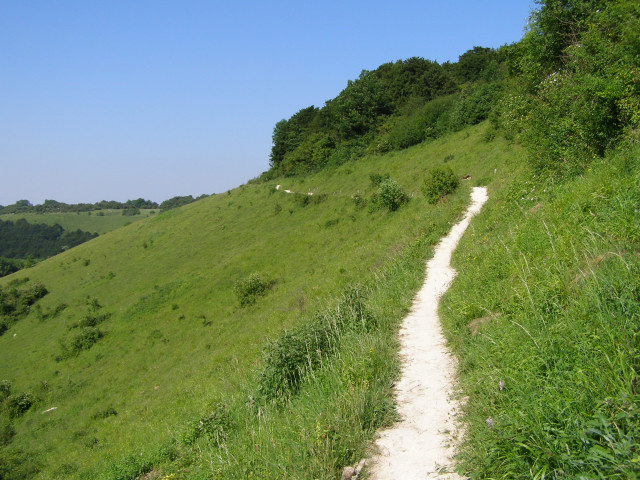 Northwest-facing scarp of Old Winchester Hill