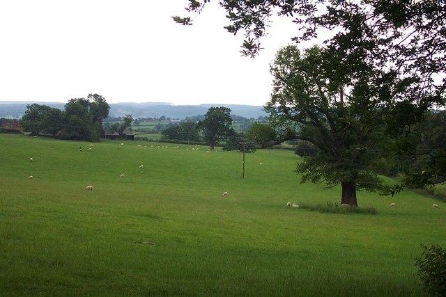 Near Blithfield