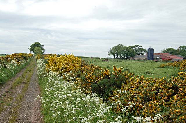 Stockbridge Farm