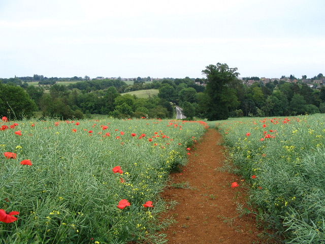 Footpath between Wroxton and Drayton
