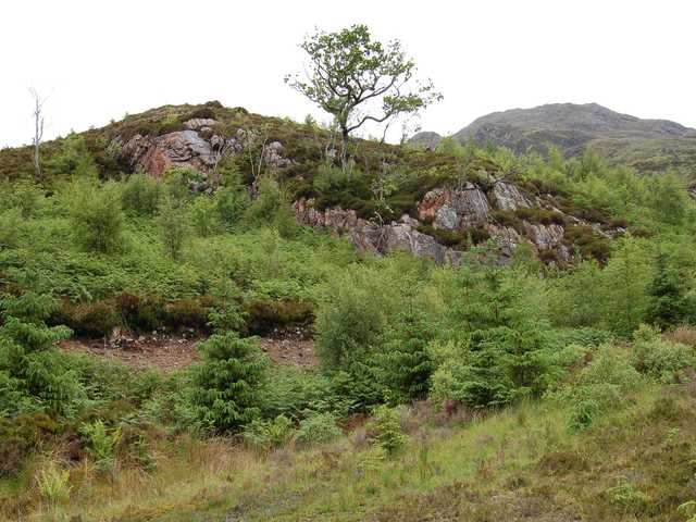 Crag above the road to Arnisdale