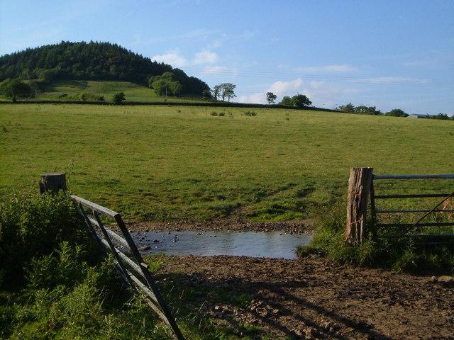 Buckton Hill from Snod Brook