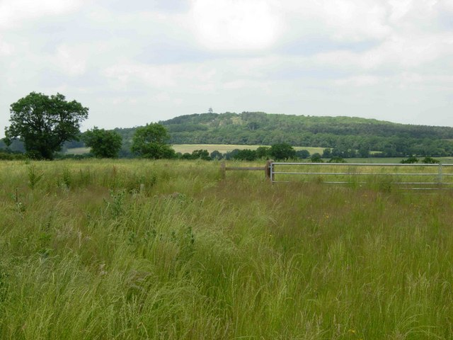 View towards Bardon Hill