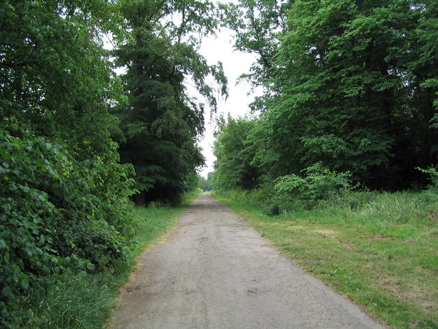 Bridleway into Exton Park