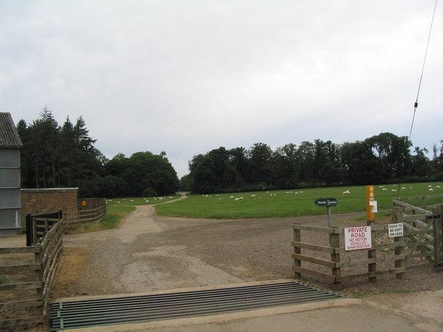 Bridleway junction, Exton Park