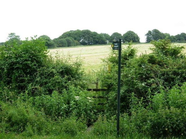Footpath south of Bawdon Lodge