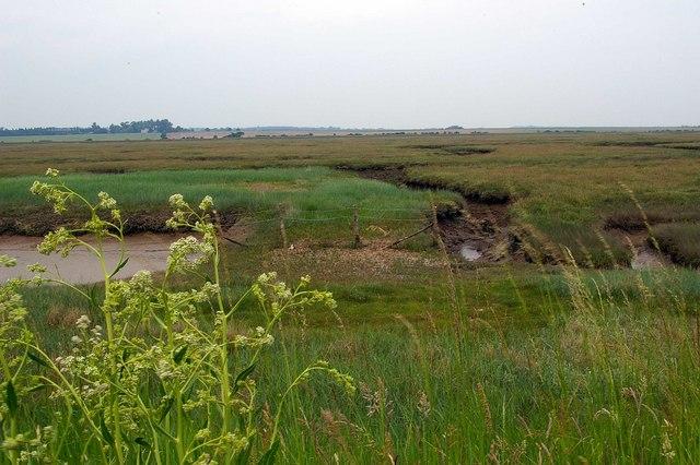 Langenhoehall Marsh