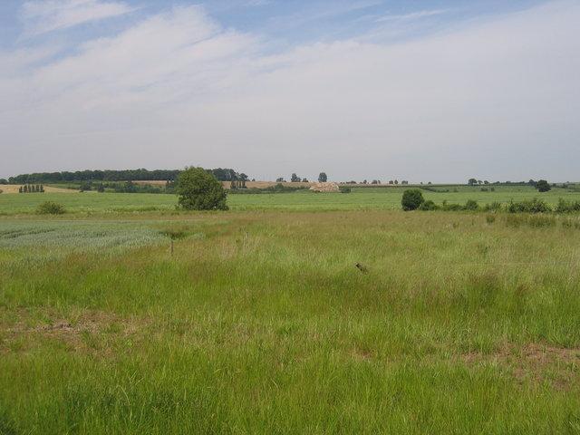 View towards Newborough Farm