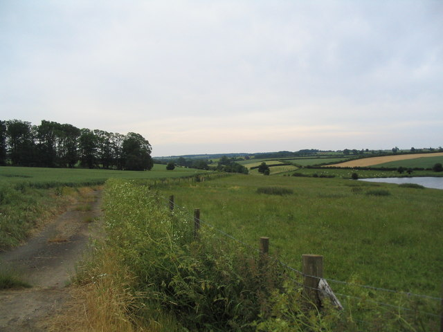 Footpath south from Fort Henry, Exton Park