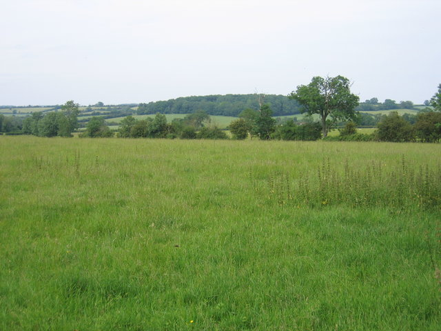 View towards Bright Hill