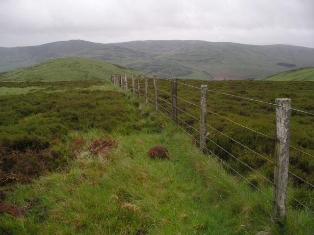 Fence, Peatshank Head