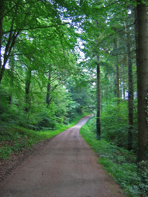 Track, Mulgrave Woods