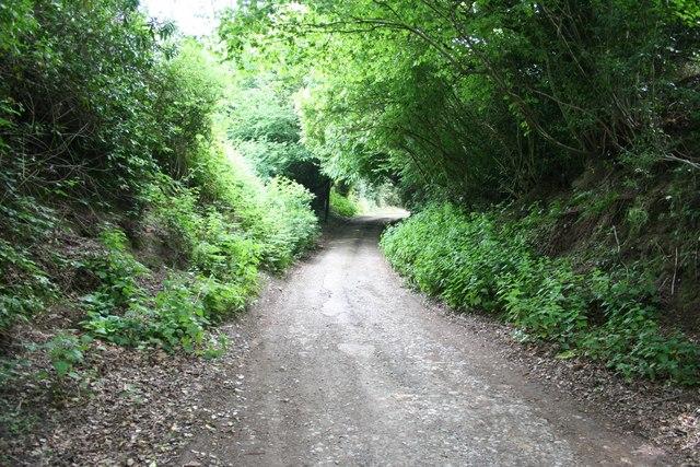 Lane to Hartridge Manor Farm