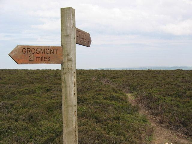 Sleights Moor Footpath