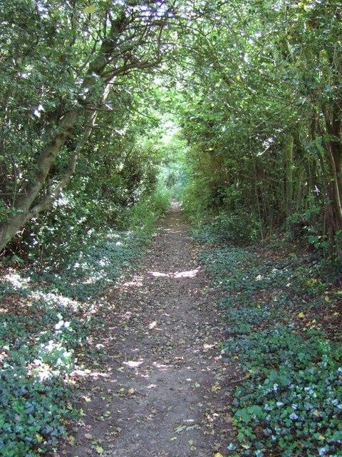 Footpath, Bellingdon