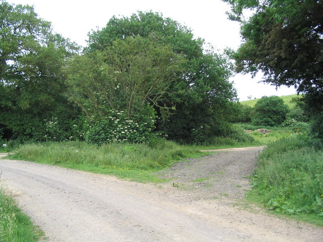 Bridleway junction near Big Pits Wood