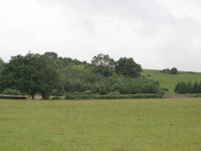 Fowler's Hill