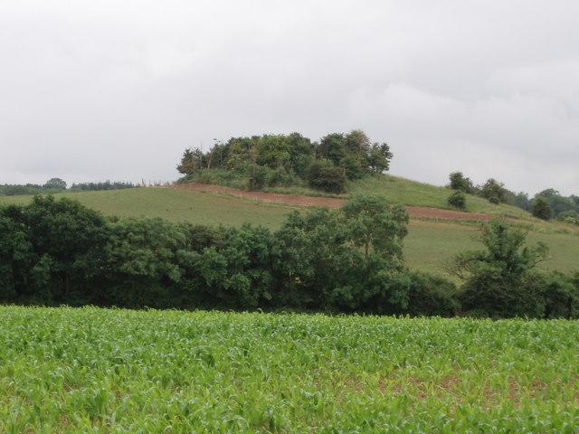 Titters Hill