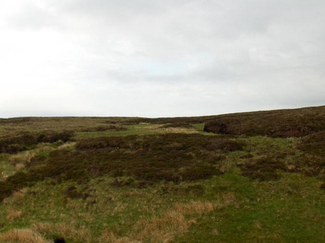 Nondescript moorland