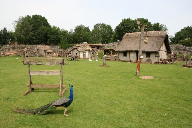 Mountfitchet Castle Village & Peacock