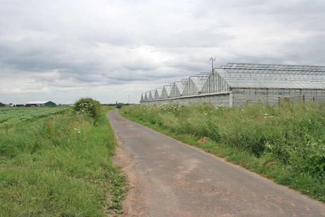 Glasshouses on Ten Acre Lane, Crossgate