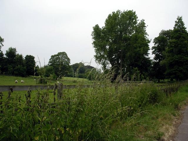 Parkland, Kilmeston