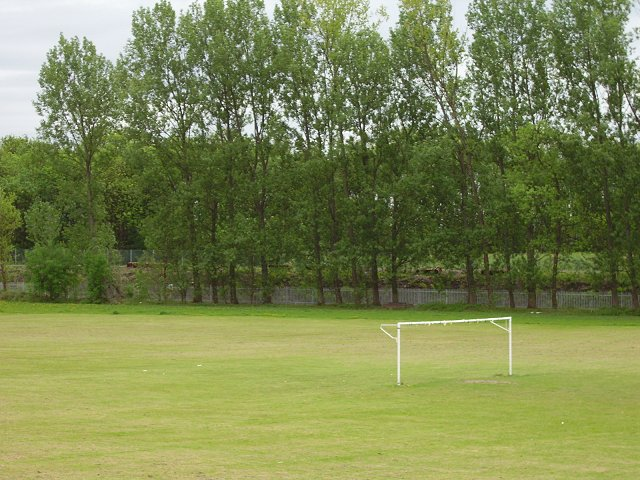 Playing fields, Alloa