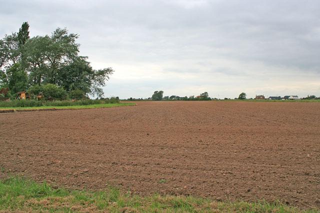 Farmland off Little Lane, Gosberton Cheal