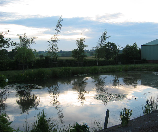 Reflections at sundown