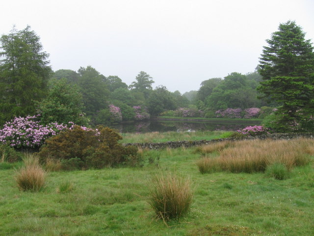 Small reservoir in woodland