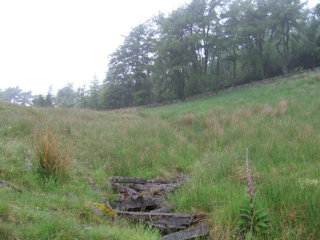 Remains of old bridge over burn below The Ward woodland
