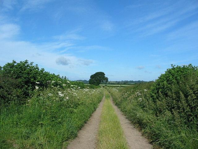View west to Riseborough from Broadrum Lane