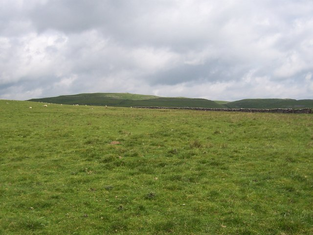 Tommy High Pasture (1)