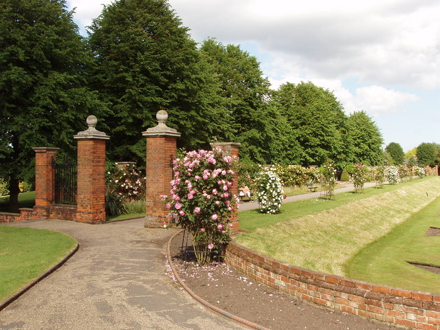 Rose garden by Colchester Castle