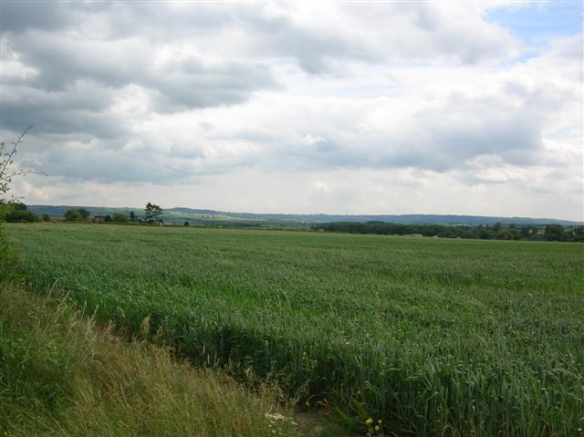 Field outside Bossall