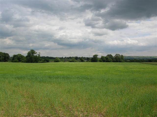 Carr Field