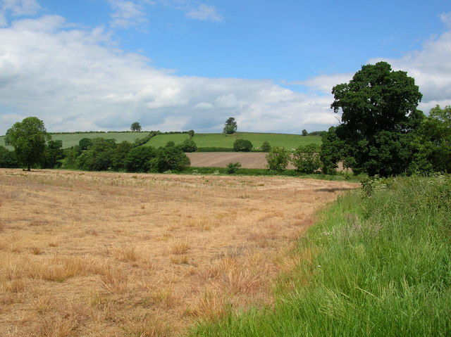 Fields near Crambe