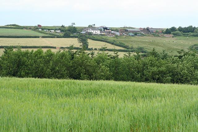 Tiverton: towards Palfrey�s Barton